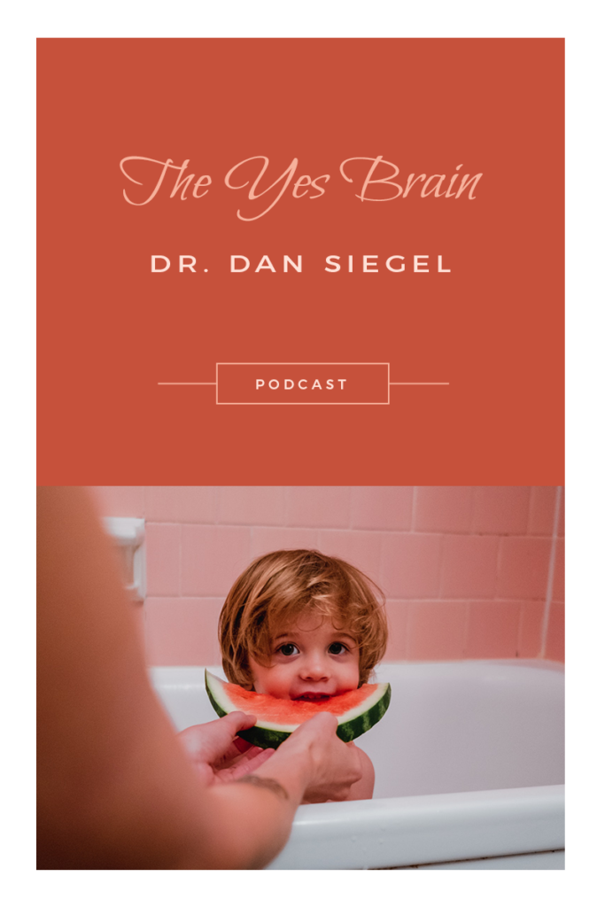 Interview with Dr. Dan Siegel author The Yes Brain